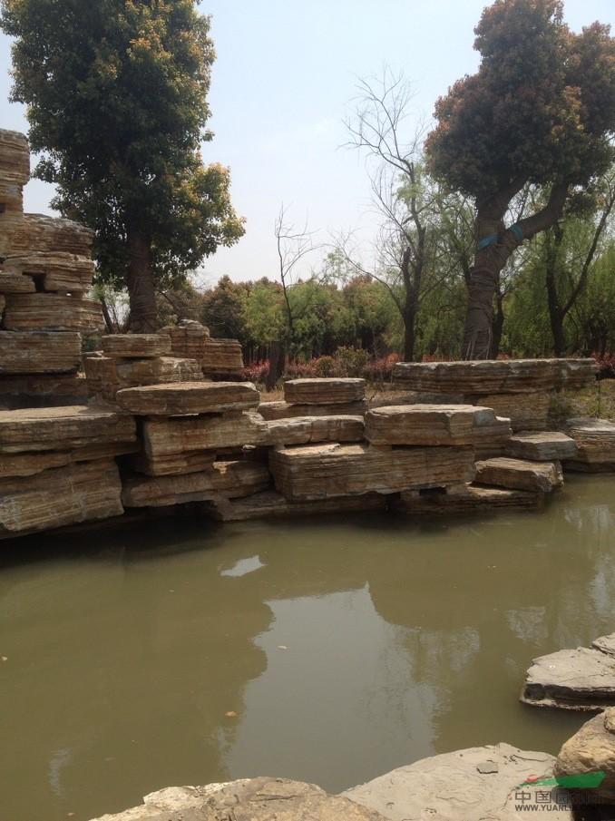 上海景观工程案例2