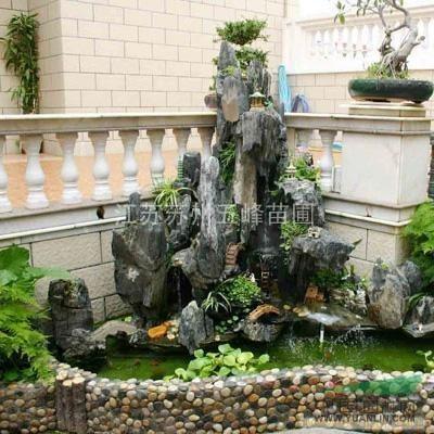 上海庭院绿化上海厂区绿化上海垂丝海棠