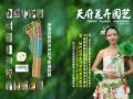 2012年11月期刊总第23期《天府花卉园艺》